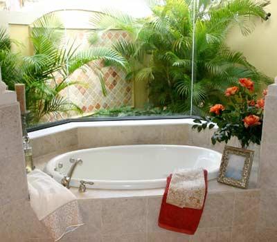 комнатные растения ванная комната