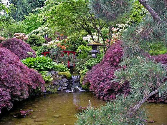 Чем отличается прекрасный сад от приусадебного участка?