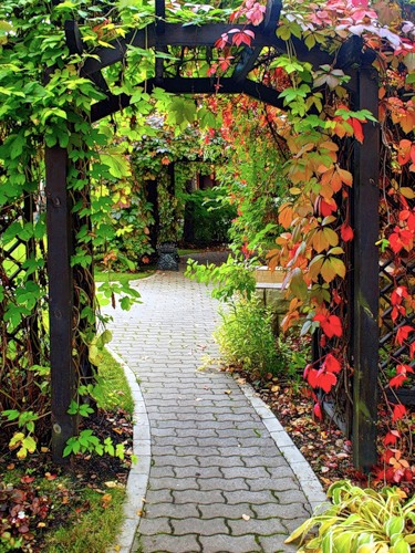 Делаем дорожки в саду