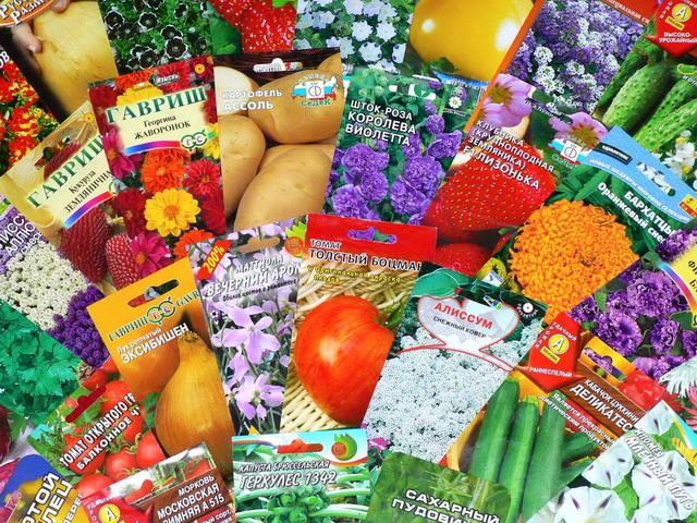 покупка семян 2
