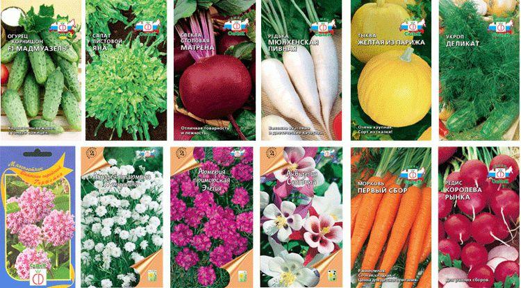 покупка семян 3